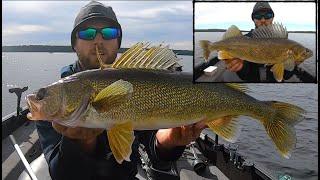 Super EFFECTIVE Way t๐ Catch Fall Walleyes!