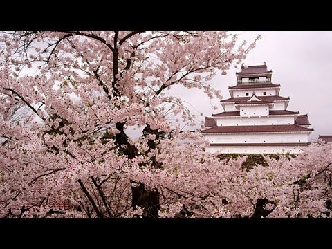 鶴ヶ城の桜 Cherry Blossoms in Tsuruga-castle ( Shot on RED EPIC )