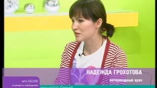 Алопеции у собак и кошек  Надежда Грохотова, ВК «Ветдоктор»