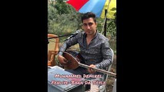 Muhammed Demirel - Oyun Havaları