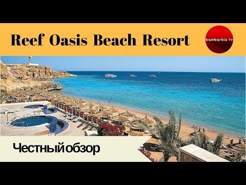 Честные обзоры отелей Египта: REEF OASIS BEACH RESORT 5* (Шарм эль Шейх)