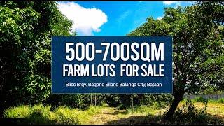 Download lagu AFFORDABLE FARM LOT FOR SALE IN BATAAN