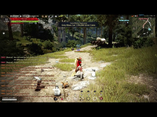 BDO XBOX - How to Remap Your Potions