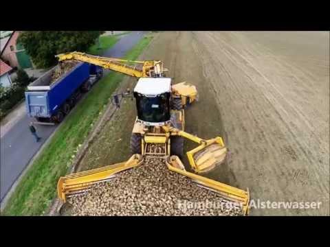 Aerials sugar beet