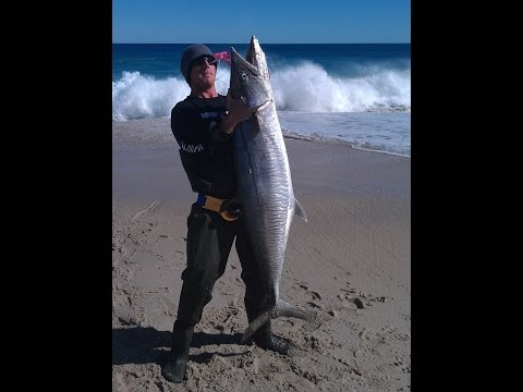 Huge 32kg Spanish Mackerel caught from Wagoe beach in WA.