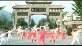 4 little shaolin gongfu stars