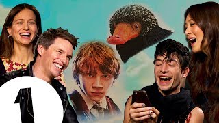 Ron vs. The Niffler: Who wins? The Fantastic Beasts 2 cast on the real star of the series.