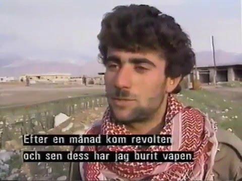 Kurdistan 1991