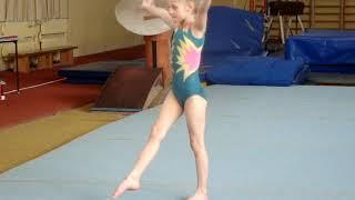 Соревнования в Северодонецке по спортивной гимнастике.Вольные