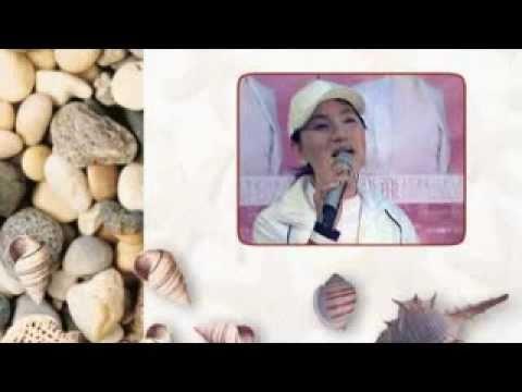 鳳飛飛好歌MV - 《情字這條路》
