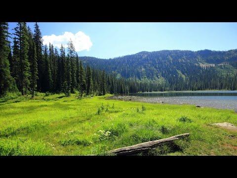 Breathtaking Moose Lake | Homemade Glidecam