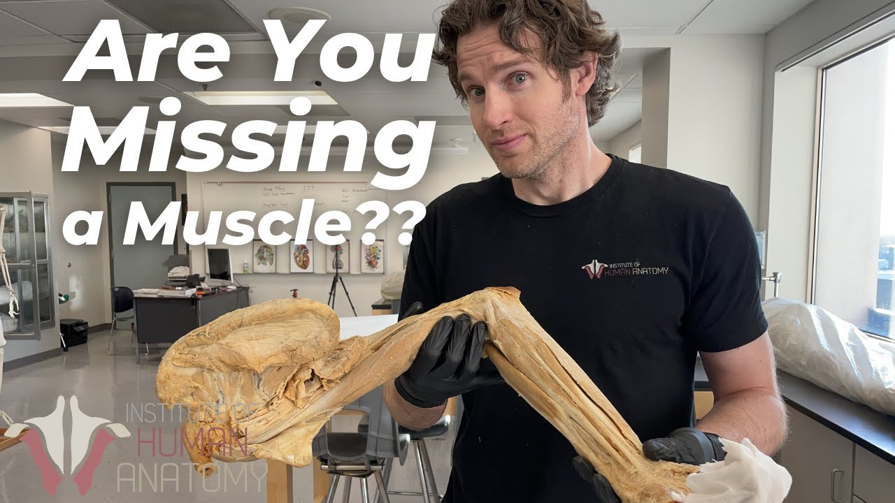 Are YOU Missing a Muscle???  | Here's a Test to Find Out!!