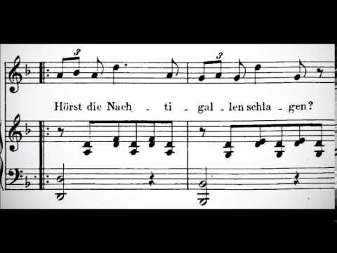 (Instrumental) Ständchen by Schubert