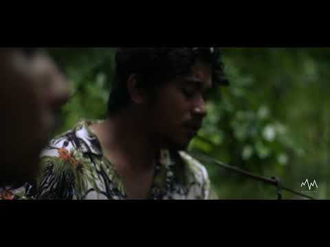 THE PAPER KITES - BLOOM ( NUBIVAGANT COVER ) LIVE WILD SESSION