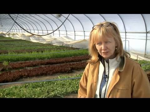 Hoop House tech allows year-round farming at MSU