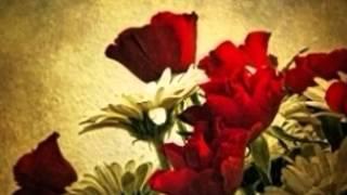 Sun Sun Barasat Ki Dhun [Full Song] (HD) With Lyrics - Sir