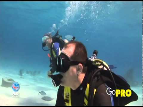 Overview and Introduction to PADI Professional Level Courses