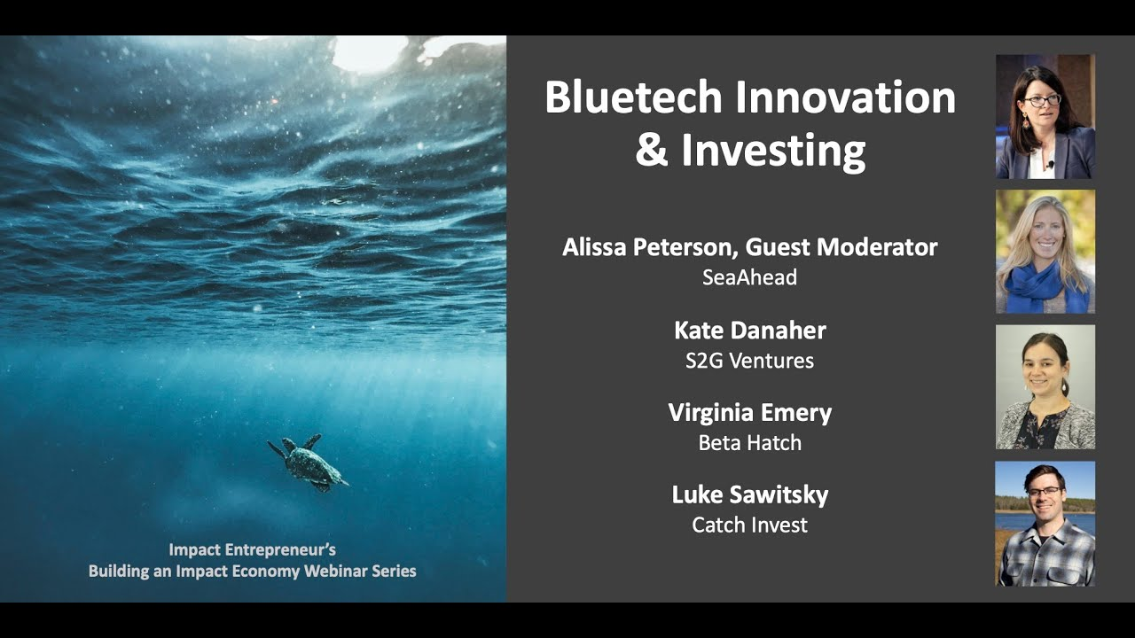 Bluetech Innovation and Investing
