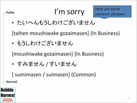 1.4 Excuse Me / I'm Sorry - Japanese Conversation