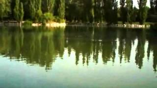 Enka japanese song - Teresa Teng - Doméstica oriental.mpg