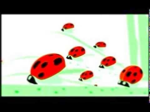 Insect pheromone control