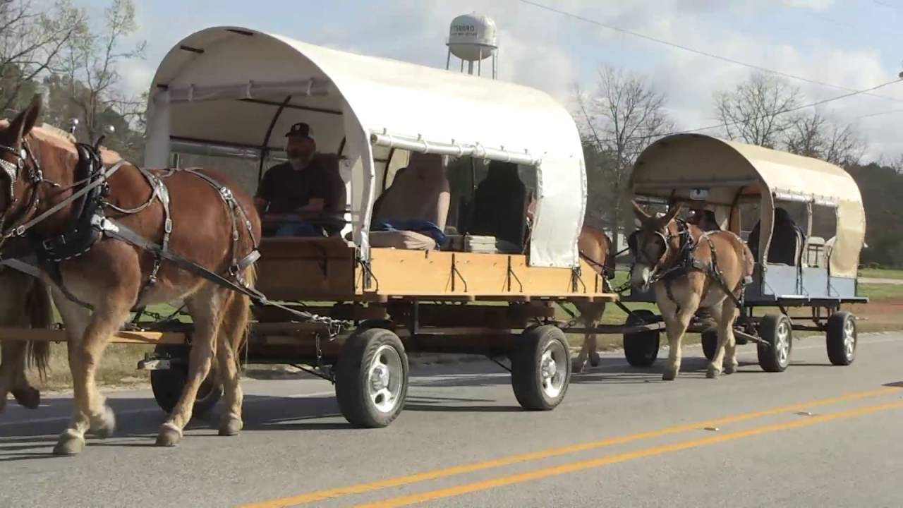 vision quest wagon train