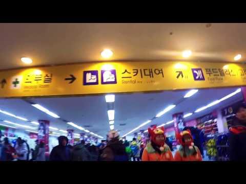 Phoenix Ski Resort, South Korea