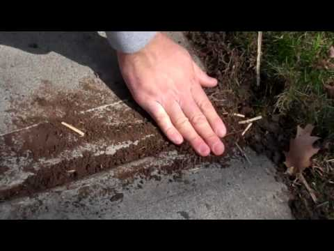 LanscapeBuys.com: Running wire across concrete