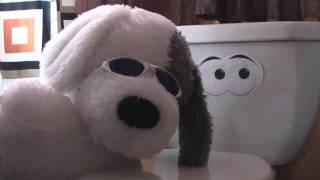 Use Da Potty! - Homemade potty training video.