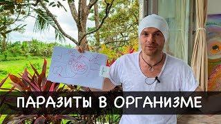 """видео: """"ПАРАЗИТЫ В ОРГАНИЗМЕ"""" как избавиться от паразитов навсегда? Убойное средство от паразитов"""