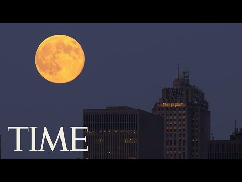 Skip Kelly - Sounds Creepy, But There's a Super WORM Moon Tonight