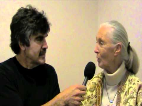 Dr Jane Goodall Interview with Dana Lyons About Roots and Shoots  The Cows With Guns Report