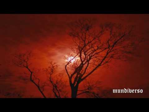 Mike Oldfield Hibernaculum [ 1080p HD ]