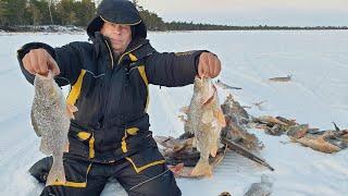 ПЕРВЫЙ ЛЕД НА ТАЁЖНОМ ОЗЕРЕ часть2 Рыбалка 2020 21