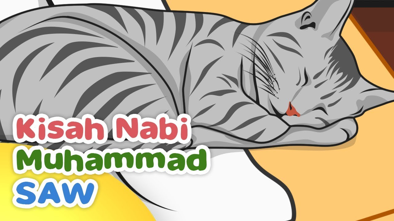 Kisah Nabi Muhammad Saw Keistimewaan Muezza Kucing Rasulullah Kartun Anak Muslim Indonesia Youtube