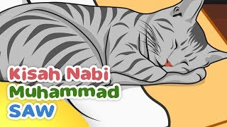 Video Kisah Nabi Muhammad SAW Keistimewaan Muezza Kucing Rasulullah - Kartun Anak Muslim Indonesia download MP3, 3GP, MP4, WEBM, AVI, FLV Maret 2018