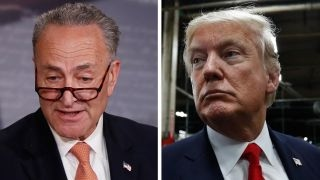 Trump accuses Schumer of 'leading Democrats to doom'