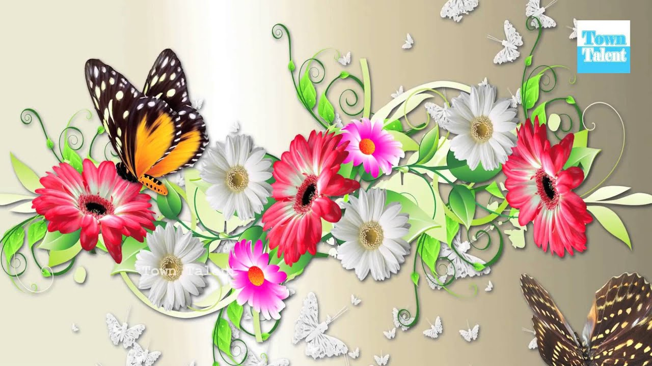 flower butterfly wallpaper - town talent - youtube