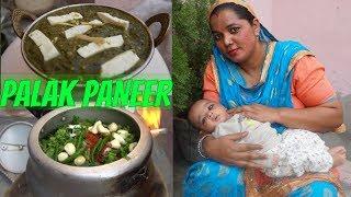 Palak Paneer Recipe | How to make Palak Paneer | Punjabi