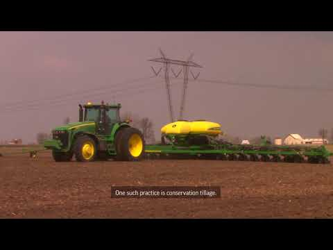 Behind the Scenes of GMO Creation: Planting & Crop Growth