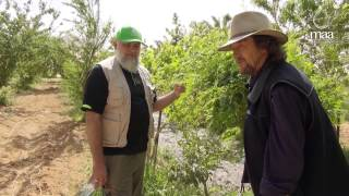 Greening The Desert - Muslim Aid Australia permaculture