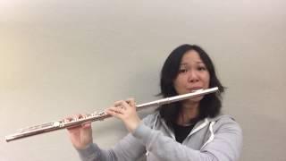 未来 (Mirai/Future) from オレンジ Orange, anime ending theme by コブクロ (Kobukuro) flute solo cover