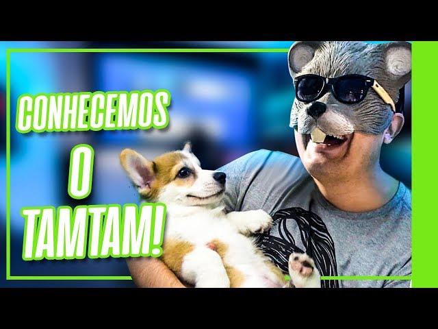 INVADIMOS A CASA NOVA DO RATO! - Ubi Invade - Ubisoft Brasil