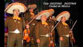 Video Vicente fernandez-Sigo siendo el rey con ♫Letra!!! ♫♪Musica Mexicana! download MP3, 3GP, MP4, WEBM, AVI, FLV September 2017