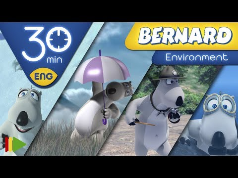 Bernard Bear | Environment | 30 minutes
