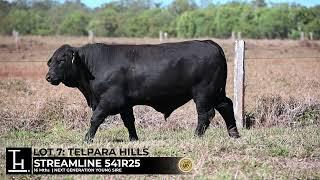 Lot 7 - Telpara Hills STREAMLINE 541R25