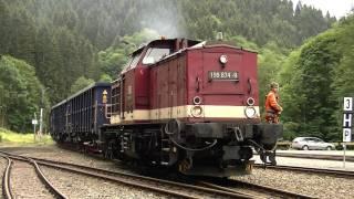 Harzkamel 199 874 mit Schotterzug in Eisfelder Talmühle