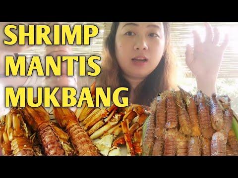 Download MANTIS SHRIMP (WEIRD FOOD)MUKBANG  PHILIPPINES