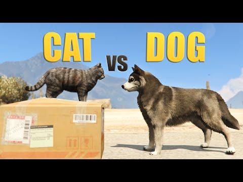GTA V - CAT vs DOG