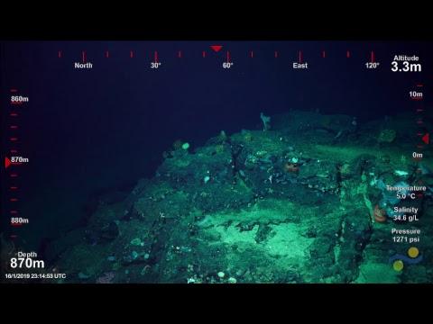 ROV SuBastian Dive 222 Costa Rican Deep Sea Connections